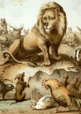 "Beckman's ""Reinke Fuchs"" Folklore Chromolithograph -1856-  LION & OTHER ANIMALS"
