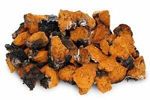 Chaga Mushroom - Chunks or Powder