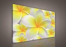 CANVAS Wandbild Bild Leinwandbild Blumen Blume Gelb Bukett Natur Foto 14N123O1