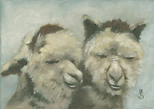 """Farmyard Gossip, Alpacas"" Debra Sepos original oil 5"" x 7"" fleece farm portrait"