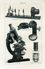 1900s OLD MICROSCOPE ULTRA MICROSCOPE Antique Litho Print