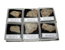 NWA 657 L5 meteorite slice in Square display case Early NWA number