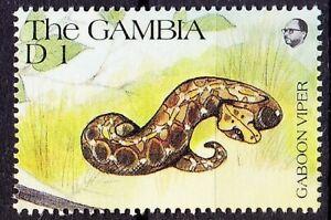 Gaboon Viper, Reptiles, Snakes, Gambia 1991 MNH