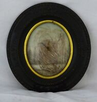 ANTIQUE FRENCH VICTORIAN MOURNING HAIR ART CONVEX GLASS FRAME