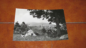 Card Erbezzo Panorama Verona Fg VG IN The 1970