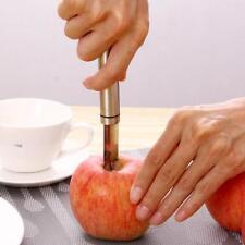 Apple Corer Fruit Seed Core Remover Pear Seeder Slicer Knife Kitchen Gadgets