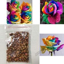 Garden Plants Multi-color Flower Seeds 200PCS Colorful Rainbow Rose Seeds new
