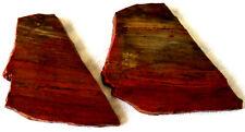 New listing Rainbow Petrified Wood Slab - 120 Grams - Arizona - Red - Gold - Lot of 2