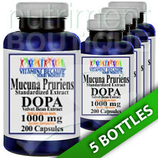Mucuna Pruriens Extract 1000mg 5X200 Caps L-Dopa Velvet Bean by Vitamins Because