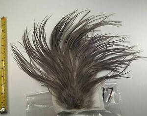 Dyed Med Blue Dun Rooster Saddle Hackle Long Thin Dry Fly Tying Feathers #17