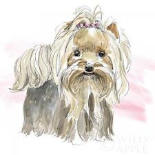 YORKSHIRE TERRIER DOG FINE ART PRINT YORKIE