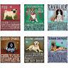 Fridge Magnets Vintage Style Retro Sign Dog Breed Characteristics Kitchen Gift