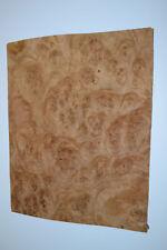 Oak Burl Raw Wood Veneer 4 Sheets At 95 X 12 Inches 142nd E6925 4