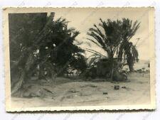 Foto, Sonderverband 288, PKW, Funkkraftwagen, Einsatz in Libyen, (G), 81 (W)1220