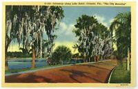 Driveway Along Lake Adair Orlando Florida FL Linen Postcard