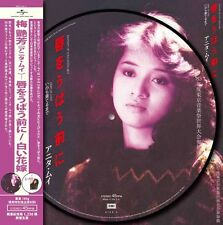 "Anita Mui Fantasy of Love + Marry Me Merry Me 10"" Picture LP 45rpm Limited 梅艷芳"