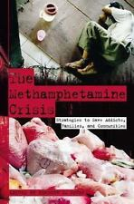 The Methamphetamine Crisis: Strategies to Save Addicts, Families, and -ExLibrary