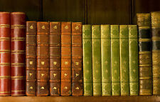 Framed Print - Vintage Leather Bound Books on a Shelf (Home Office Picture Art)