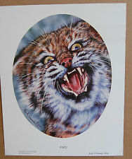 Vivi Crandall  PMS   Limited Edition Fine Art Wildlife Print Bobcat