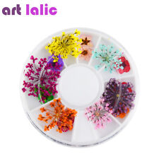 Nail Art Decoration Dried Flower 3D Manicure Polish Gel Acrylic Tips Decoration