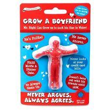 Grow A Your Own Boyfriend Secret Santa Stocking Filler Idea Joke Christ Gift  UK