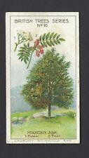 CADBURY - BRITISH TREES - #10 THE MOUNTAIN ASH