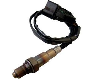 Wide-Band O2 Oxygen Sensor 18mm for ThunderMax ECM Zippers 309-355
