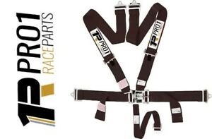 EXPRESS Post | SFi 16.1 5pt Harness Belt | BLACK | Speedway CAMS Drag Race ANDR