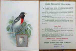 Singer Sewing Machine 1898 Ridgway/Artist-Signed Bird Print: Rose-Brst. Grosbeak