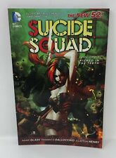DC The New 52 SUICIDE SQUAD Volume 1 Kicked in the Teeth Adam Glass TPB