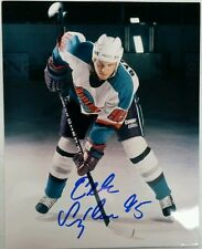Petr Sykora Signed Detroit Vipers IHL Photo W/COA