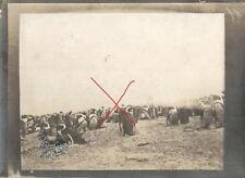 21776/ Originalfoto 9x12,5cm, Pinguin-Kolonie, ca. 1910