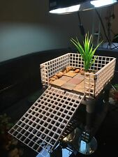 Medium Turtle Tower : Turtle Basking Platform : Turtle Dock : Reptile Platform