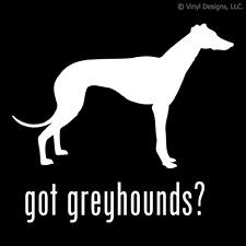 GOT GREYHOUNDS? GREYHOUND DOG DECAL - DOGS STICKER