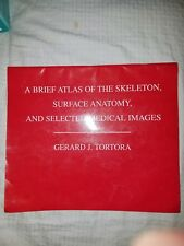 A Brief Atlas of the Skeleton, Surface Anatomy and Selected Medical Images