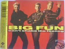 BIG FUN CAN'T SHAKE THAT FEELING MAXI CD