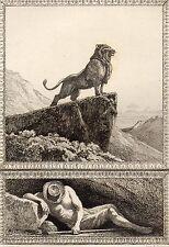 EAU FORTE / Fables de la Fontaine 1883 / LE LION ET LE CHASSEUR