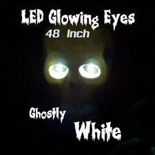LED GLOWING EYES - HALLOWEEN WHITE 5MM 9V ON/OFF SWITCH  48 inch pigtail