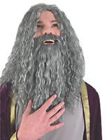 Vieux Sorcier Perruque Barbe Gris Homme Gandalf Halloween Accessoire Déguisement