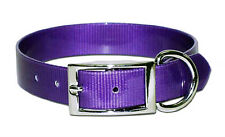 """Dog Collar - 3/4""""  Terrier, Whippet, Puppy, Pet, Hunting - Purple"""