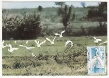 CARTE MAXIMUM FDC 1975 TIMBRE N° 1820 FAUNE AIGRETTE GARZETTE