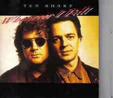 Ten Sharp-Whenever I Fall cd single