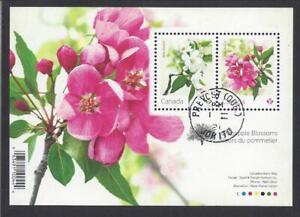 2021 Flowers Crabapple Blossoms Souvenir Sheet CDS First Day Cancel
