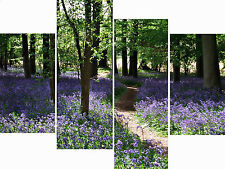 4 Panel Multi Set Bluebell Woods Path Canvas Pictures Landscape Wall Art Prints