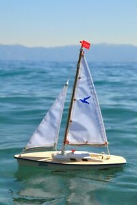 New Gunther Move sailboat- Small, but seaworthy. Ruddered for controllability