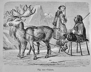 Russia Siberia YAKUTS REINDEER SLEIGH Original Victorian Print by Figuier c1893