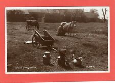 Jersey Cows Rural  Jersey  Channel Islands RP pc unused  Valentines Ref Q446