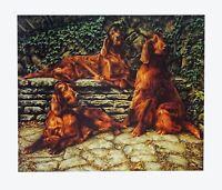 "IRISH RED SETTER DOG FINE ART LIMITED EDITION PRINT ""Crufts Trio"" - Jessica Holm"