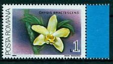 1988 Orchid,Orchidee - Chysis bractescens ,Guatemala,Salvador- Romania,MNH