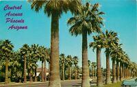 Chrome Postcard AZ I420 Palm Lined Central Avenue Phoenix Library Street View